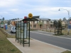bus-shelters039